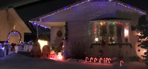 Delwood Front Yard Contest